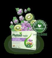 PHYTOXIL TRANSIT Comprimés B/20 à RAMBOUILLET