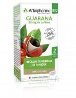 Arkogélules Guarana Bio Gélules Fl/45 à RAMBOUILLET