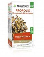 Arkogélules Propolis Bio Gélules Fl/45 à RAMBOUILLET