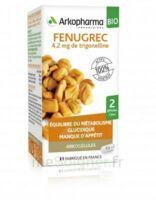 Arkogélules Fenugrec Bio Gélules Fl/40 à RAMBOUILLET