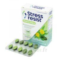 Stress Resist Comprimés Stress & fatigue B/30 à RAMBOUILLET