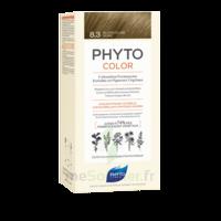 Phytocolor Kit coloration permanente 8.3 Blond clair doré à RAMBOUILLET