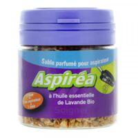 Aspiréa Grain pour aspirateur Lavande Huile essentielle Bio 60g à RAMBOUILLET