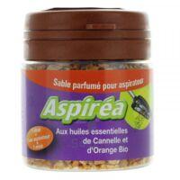 Aspiréa Grain pour aspirateur Cannelle Orange Huile essentielle Bio 60g à RAMBOUILLET